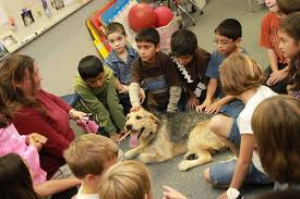 dogs classroom