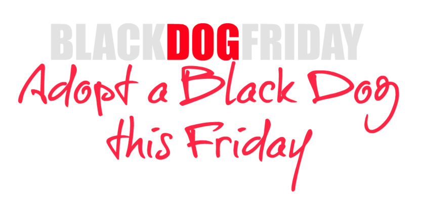 black dog Friday Logo